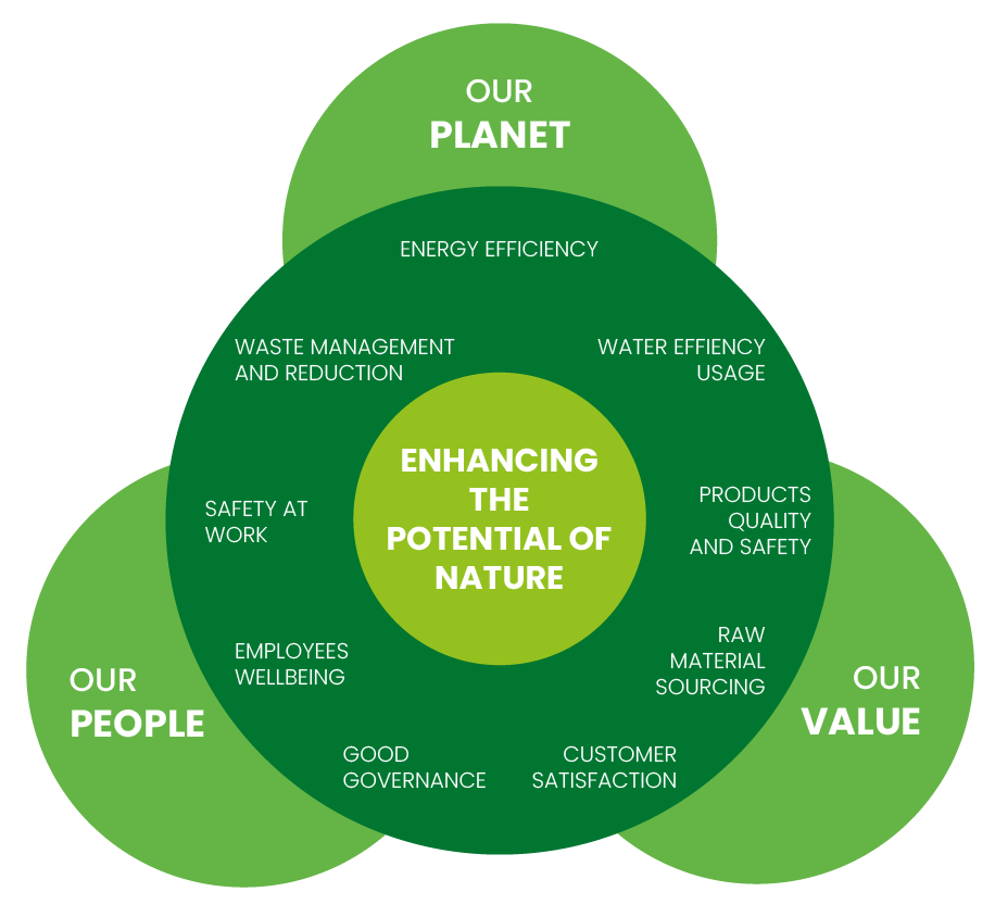 Our sustainability strategy